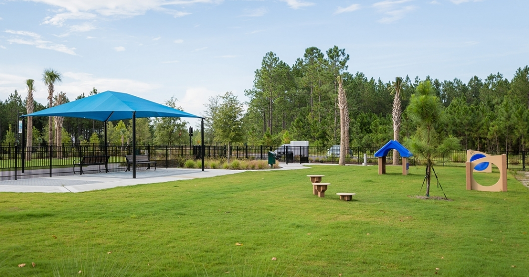 shade structure at dog park
